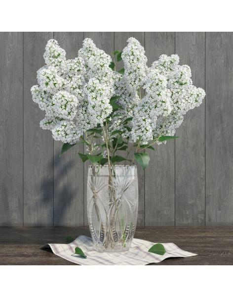 Bouquet of 15t white lilac: delivery of flowers in
