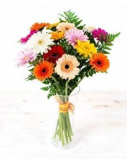 Bouquet of 25 bright gerberas | Flowers to girlfriend flowers