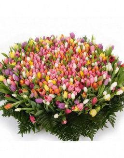 Mix bouquet 501 tulips | 501 flowers